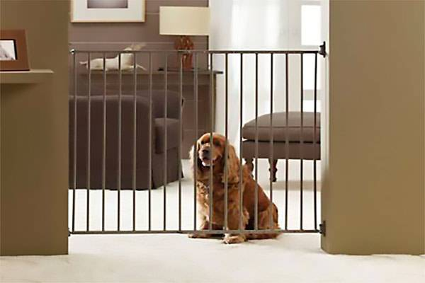 barri re pour chien s curit int rieur escalier auberdog. Black Bedroom Furniture Sets. Home Design Ideas