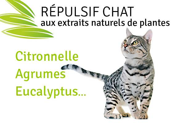 R pulsif chat naturel plante r pulsive chat auberdog - Repulsif naturel pour chat interieur ...