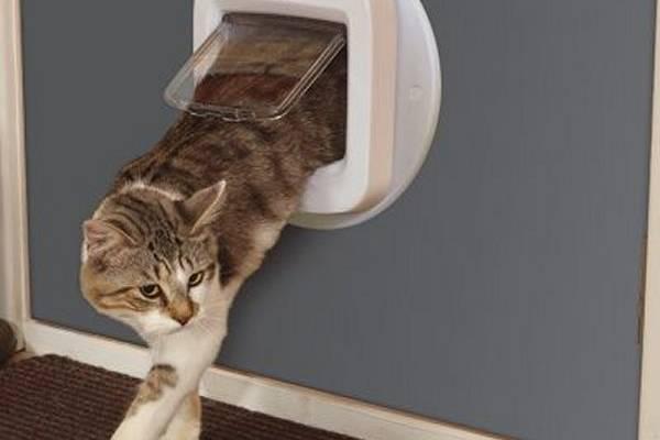 chati re mur installer une chati re dans un mur auberdog. Black Bedroom Furniture Sets. Home Design Ideas