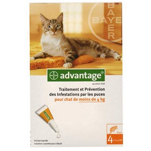 bayer advantage pour chat de moins de 4kg pour chat bayer advantage auberdog. Black Bedroom Furniture Sets. Home Design Ideas