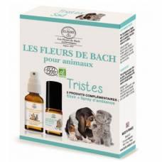 Les Fleurs De Bach Les Fleurs De Bach Pour Les Animaux Auberdog