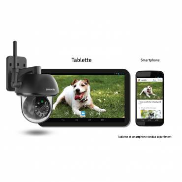 cam ra de surveillance wifi scout 73 pour chat motorola auberdog. Black Bedroom Furniture Sets. Home Design Ideas