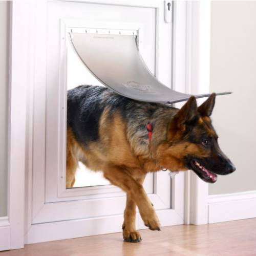 Chatiere pour tres grand chien