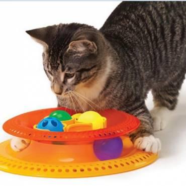 jouet pour chaton kitty 39 choice pour chat petstages. Black Bedroom Furniture Sets. Home Design Ideas