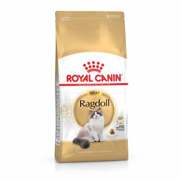 Croquettes Ragdoll pour chat - Royal Canin