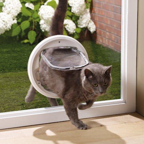chati re sp cial vitre 4 positions pour chat savic auberdog. Black Bedroom Furniture Sets. Home Design Ideas