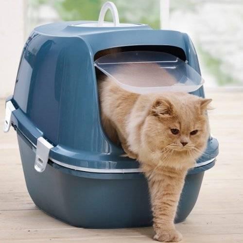 Maison De Toilette Avec Tamis Reina Sift Bleu Pour Chat Savic Auberdog