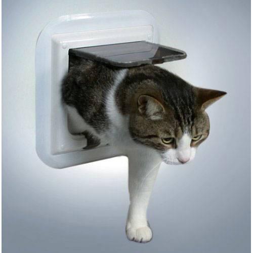 chati re porte vitr e blanc 4 positions pour chat trixie auberdog. Black Bedroom Furniture Sets. Home Design Ideas