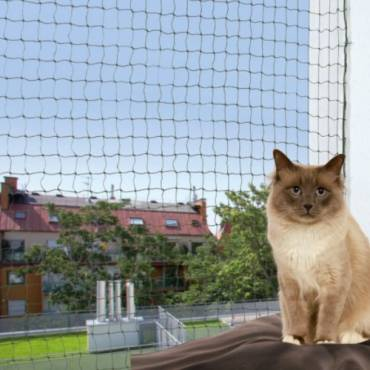 filet de protection renforc chat pour chat trixie. Black Bedroom Furniture Sets. Home Design Ideas