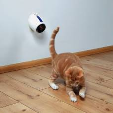 Pointeur laser Moving Light pour chat