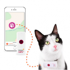 GPS Weenect 2 pour Chat