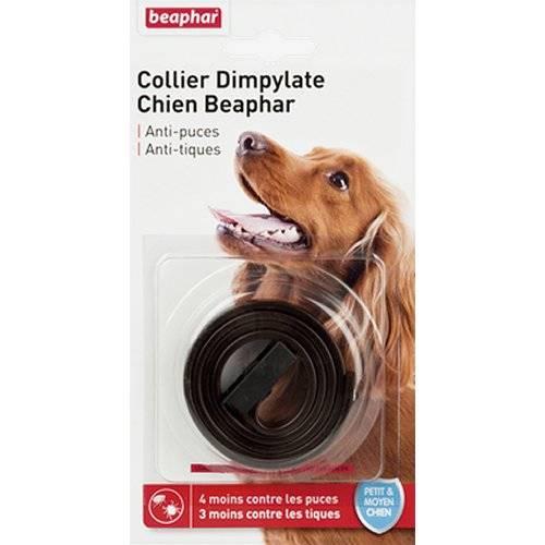 collier chien anti puce dimpylate marron pour chien beaphar auberdog. Black Bedroom Furniture Sets. Home Design Ideas