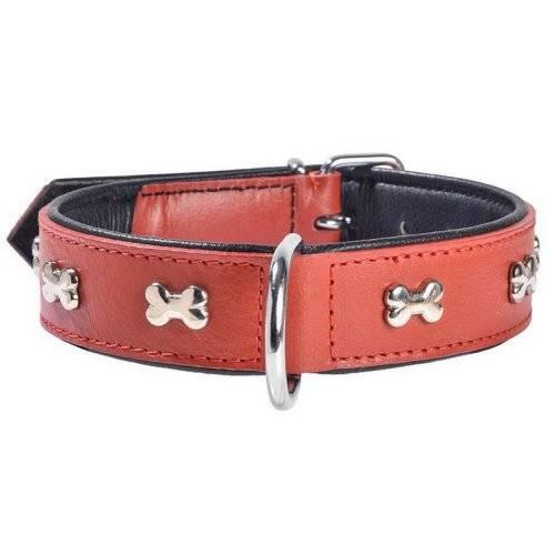 collier pour chien en cuir rouge