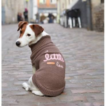 Pull Little chocolat pour chien - Bobby