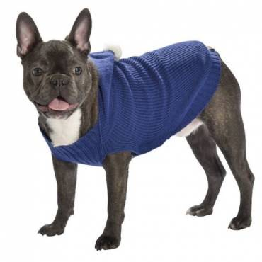 Pull Lupin bleu pour chien - 2