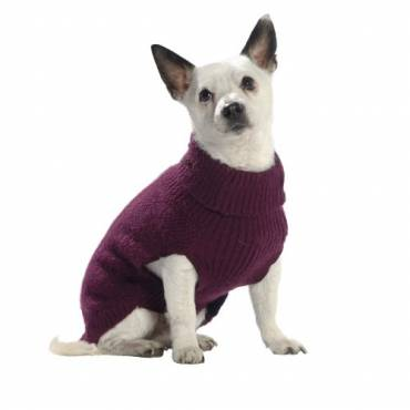 Pull Wind prune pour chien - 2