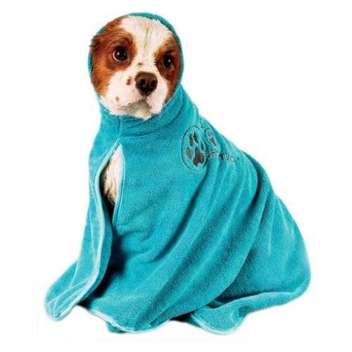 Peignoir Dry Dude bleu pour chien - Chadog  da6e9b51a