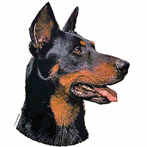 Autocollant Beauceron pour chien - Difac | Auberdog