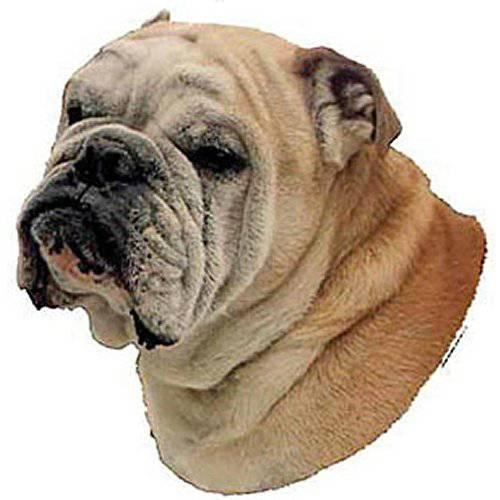 Autocollant Bouledogue Anglais pour chien - Difac   Auberdog