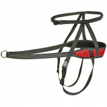 ceinture canicross speed rouge pour chien difac auberdog. Black Bedroom Furniture Sets. Home Design Ideas