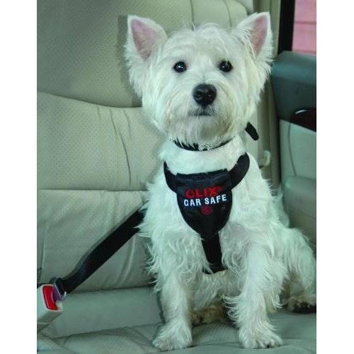 harnais de s curit voiture clix car safe pour chien difac auberdog. Black Bedroom Furniture Sets. Home Design Ideas