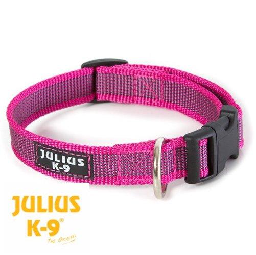 collier pour chien julius k9