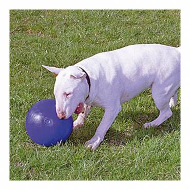 Boomer Ball pour chien - 4