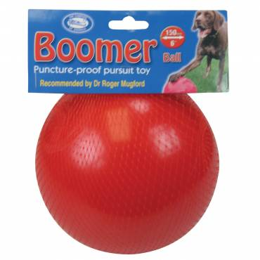 Boomer Ball pour chien - 2