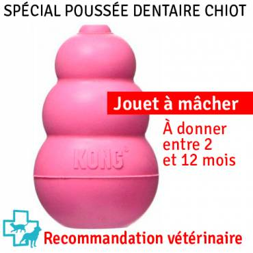 Jouet Puppy Kong rose pour chat - Kong