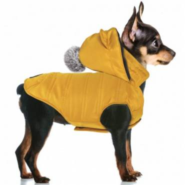 Manteau Kimi curry pour chien - Milk and Pepper