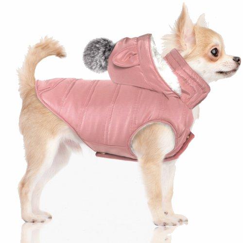 manteau petit chien, manteau chihuahua, yorkshire | auberdog