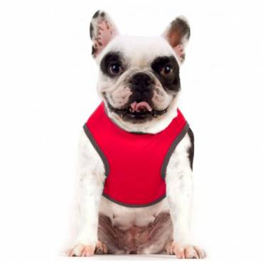 Tee-Shirt Deejay pour chien - 2