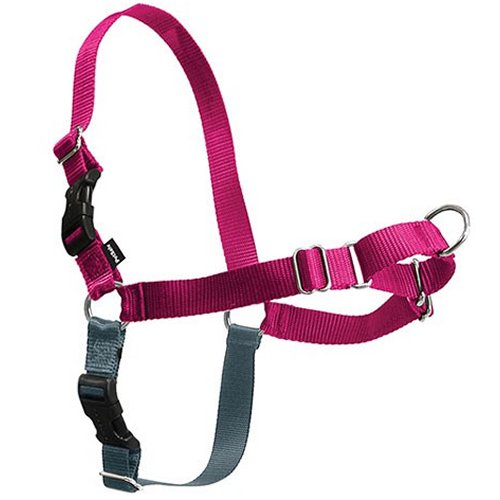 Harnais anti-traction Easy Walk framboise pour chien