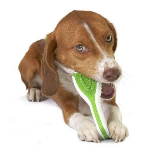 jouet pour chien finity pour chien petstages auberdog. Black Bedroom Furniture Sets. Home Design Ideas