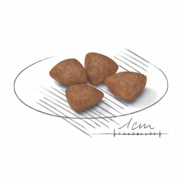 Croquettes Mini Starter Mother & Babydog pour chat - 2