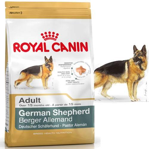 Croquettes Berger Allemand Adult pour chien - Royal Canin