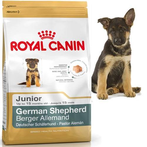 Croquettes Berger Allemand Junior pour chien - Royal Canin