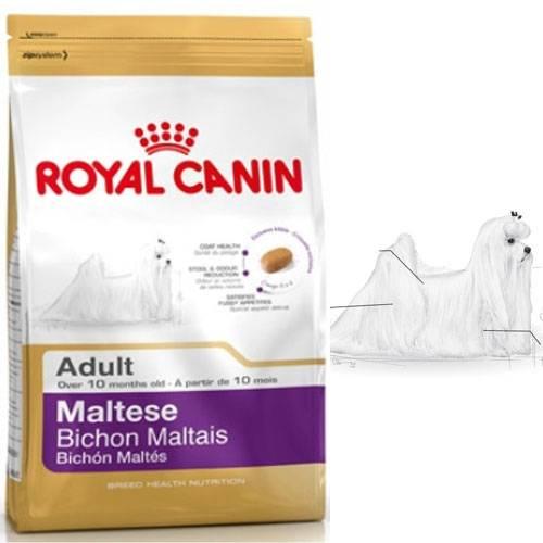 royal canin croquettes bichon maltais adult pour chien royal canin auberdog. Black Bedroom Furniture Sets. Home Design Ideas