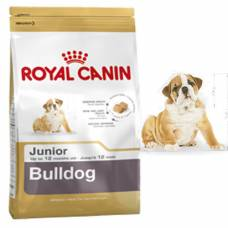 Royal Canin Croquettes Bouledogue Anglais Junior