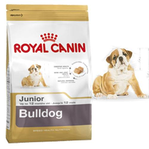 royal canin croquettes bouledogue anglais junior pour chien royal canin auberdog. Black Bedroom Furniture Sets. Home Design Ideas