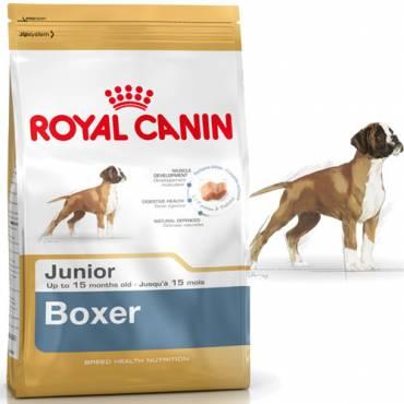 croquettes boxer junior pour chien royal canin auberdog. Black Bedroom Furniture Sets. Home Design Ideas