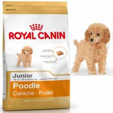 Croquettes Caniche Junior