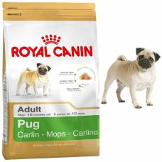 Royal Canin Croquettes Carlin Adult