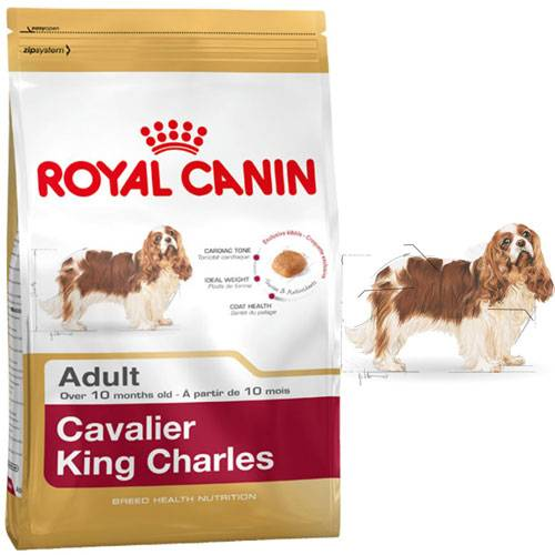 royal canin croquettes cavalier king charles adult pour chien royal canin auberdog. Black Bedroom Furniture Sets. Home Design Ideas
