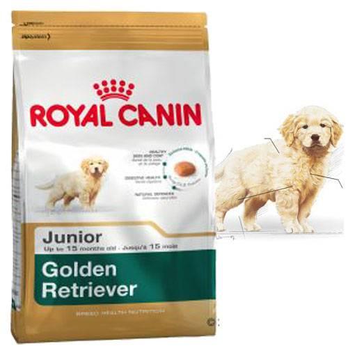 Croquettes Golden Retriever Junior pour chien - Royal