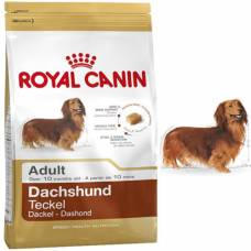 Royal Canin Croquettes Teckel Adult