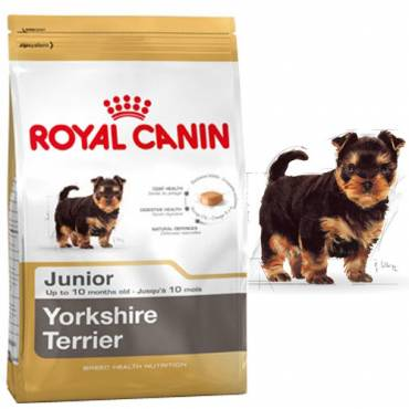 Croquettes Yorkshire Terrier Junior pour chien - Royal Canin