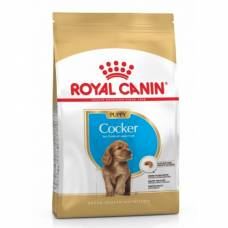 Royal Canin Croquettes Cocker puppy