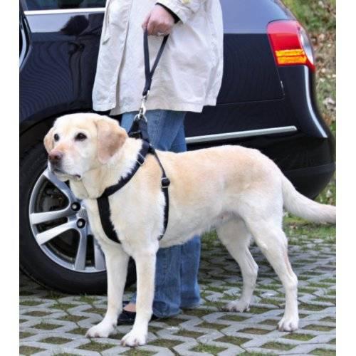 ceinture de s curit voiture universelle pour chien trixie auberdog. Black Bedroom Furniture Sets. Home Design Ideas