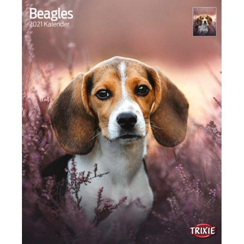 Calendrier Beagle 2021 pour chien   Trixie   Auberdog